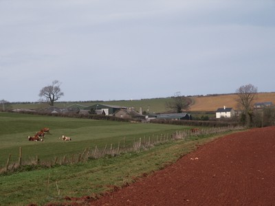 Stanter .. a rural view of Stantor Barton Farm and its surrounding fields